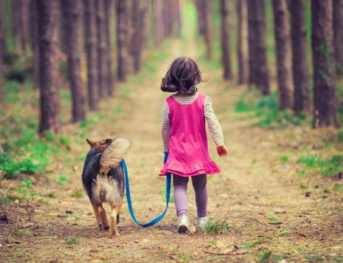 Kids and Pets: 4 Tips to Keep Interactions Safe and Fun